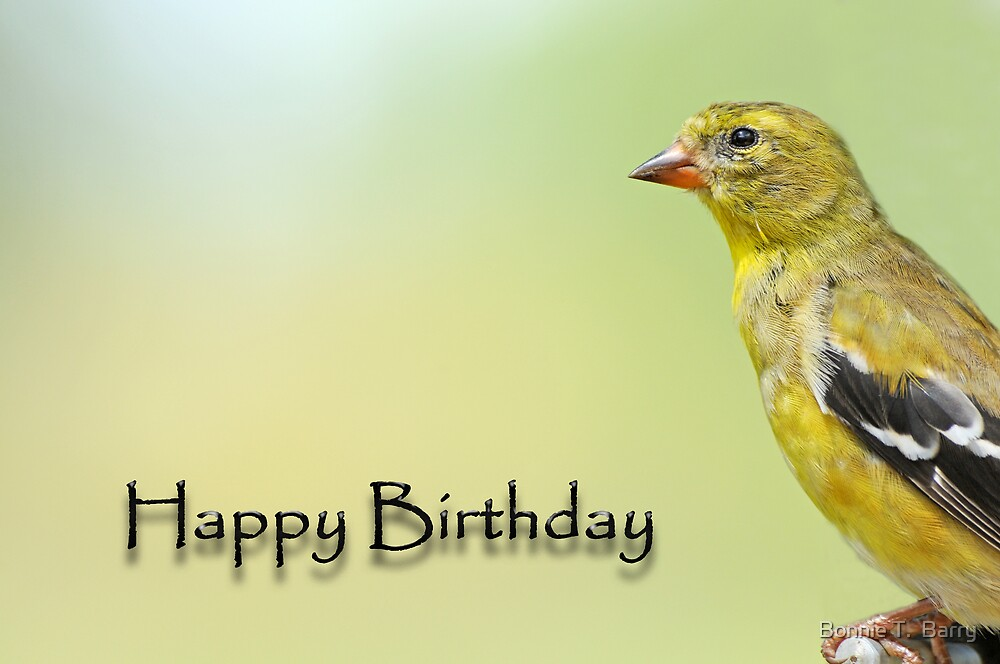 Happy Birthday Goldfinch by Bonnie T.  Barry