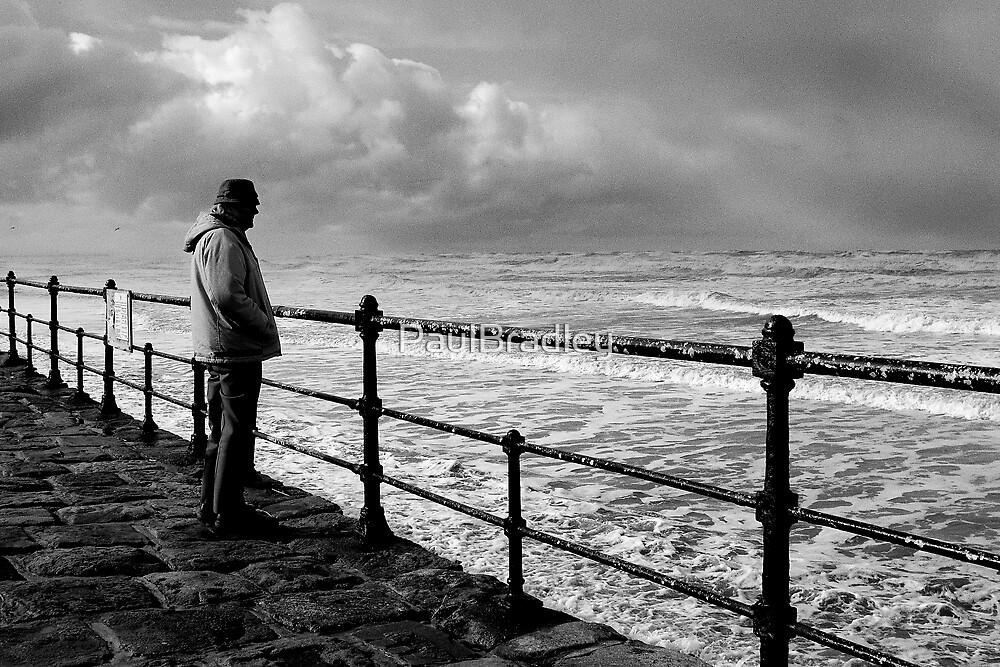 Stormwatcher by PaulBradley