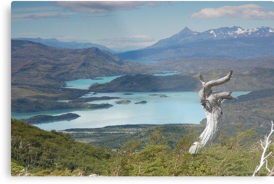 Lago Paine by MikeThomas