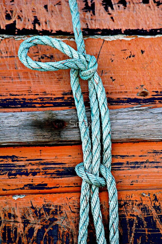The Blue Knot by Smaxi