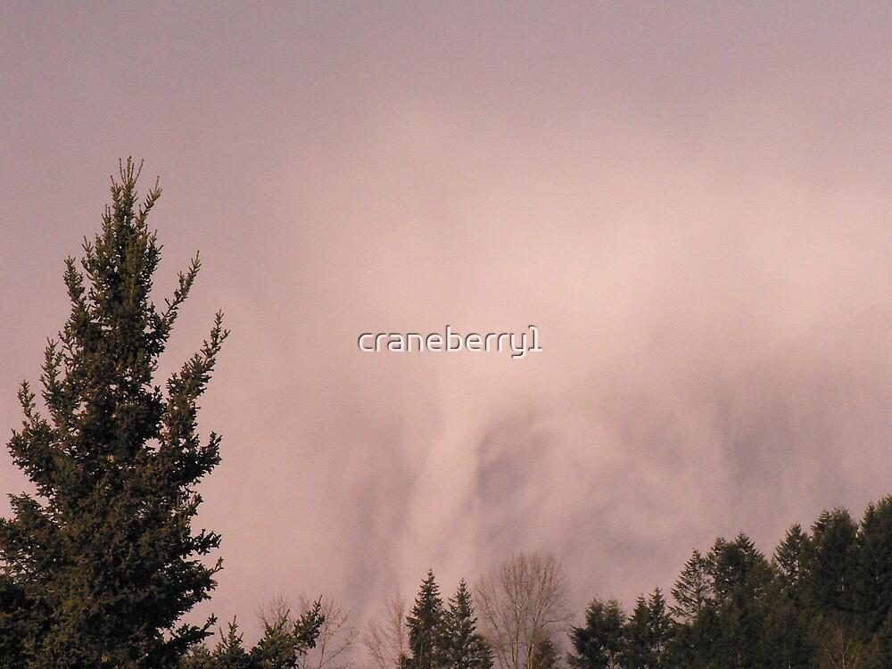 Storm cloud by craneberry1