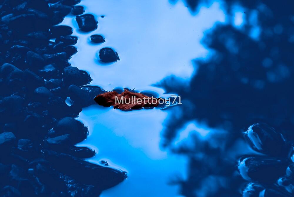 Fallen by Mullettboy71