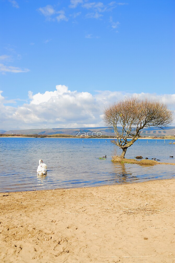 kenfig pool2 by zacco