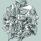Hortensias theme fantasy1 by elinakious