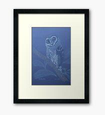Australian Sooty Owl, colour pencil art Framed Print