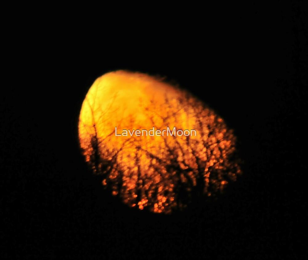 Sun Or Moon? by LavenderMoon