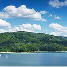 Lake Solina by Dominika Aniola