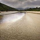 1003 Tidal River  by Hans Kawitzki