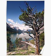 View Across Saint Mary Lake Poster