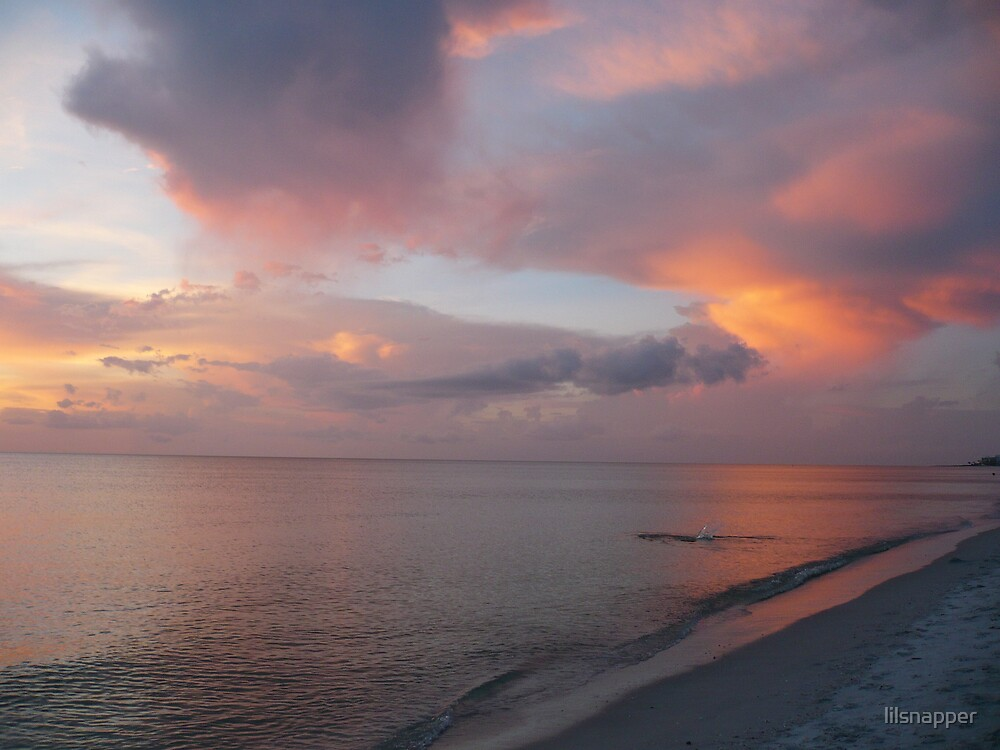 It,s the Gulf of Mexico in all it's Glory by lilsnapper