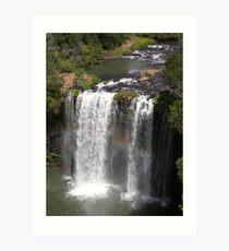 Dangar Falls, Northern Tablelands, New South Wales Art Print