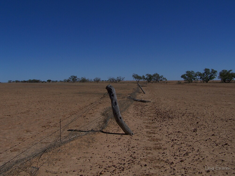 Boundary Fence, Far Western Queensland by Lisa Evans
