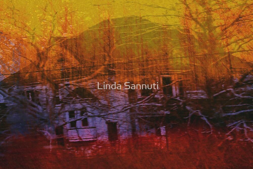 Haunted shadows by Linda Sannuti