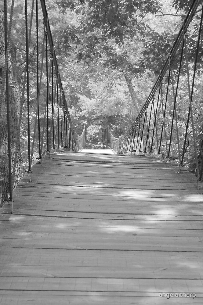 Swinging Bridge by angela tharp