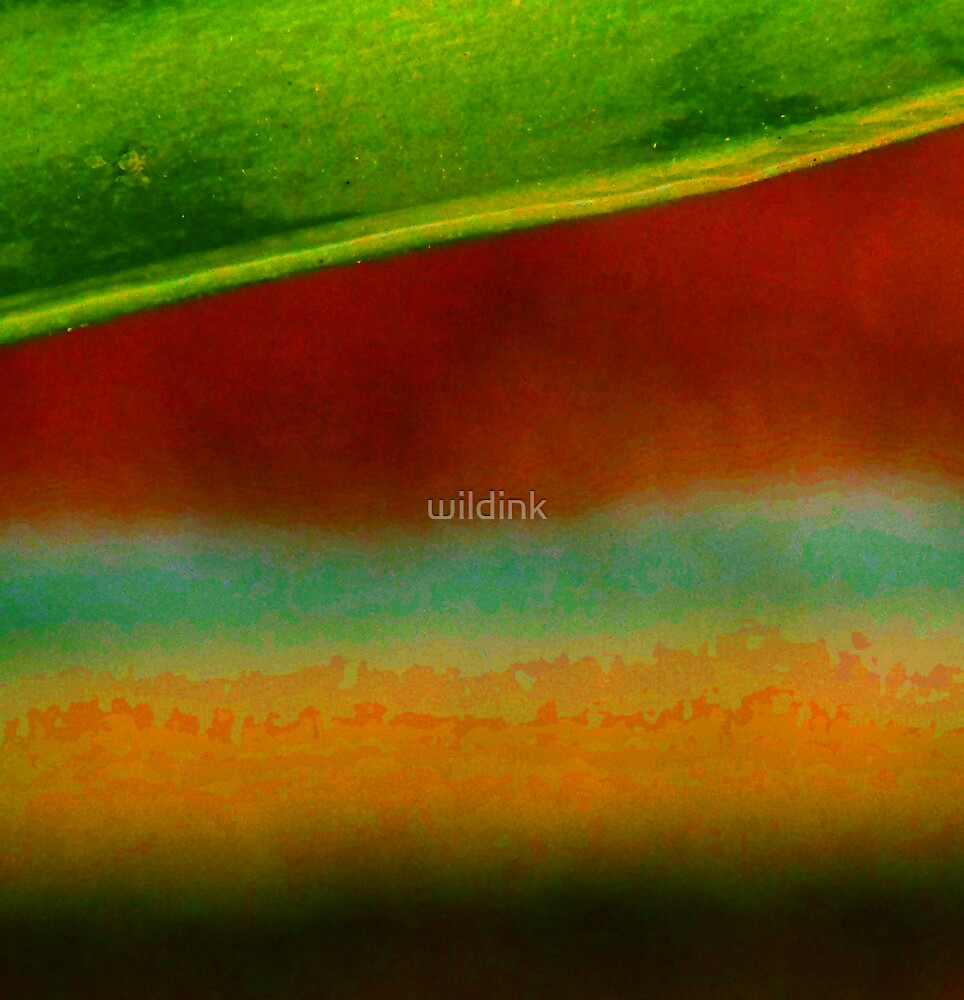 wallflower 1 by wildink