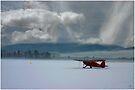 Winter Plane  by Wayne King