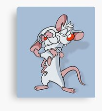 Pinky and the Brain Canvas Print