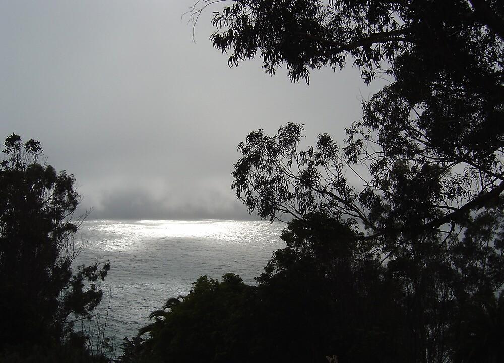 Foggy Sea by Jerry Stewart