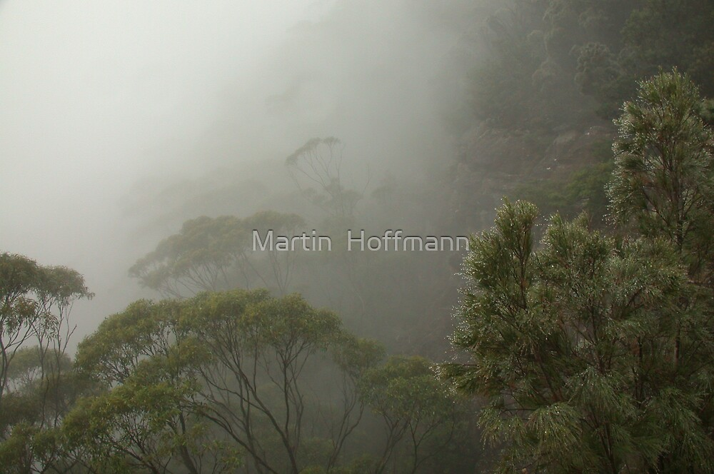 Misty Mountains by Martin  Hoffmann