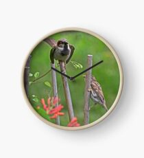 """Feed me"" Baby Sparrow Clock"