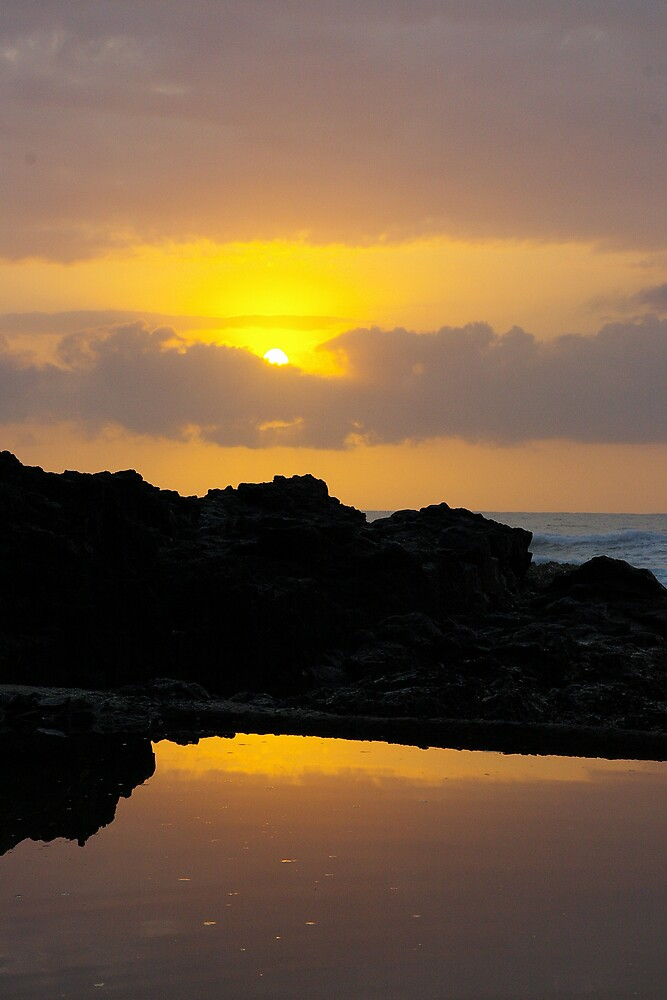 On a golden pond by Deidre Cripwell