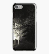 Winter Solstice Evening Trees 2014 iPhone Case/Skin