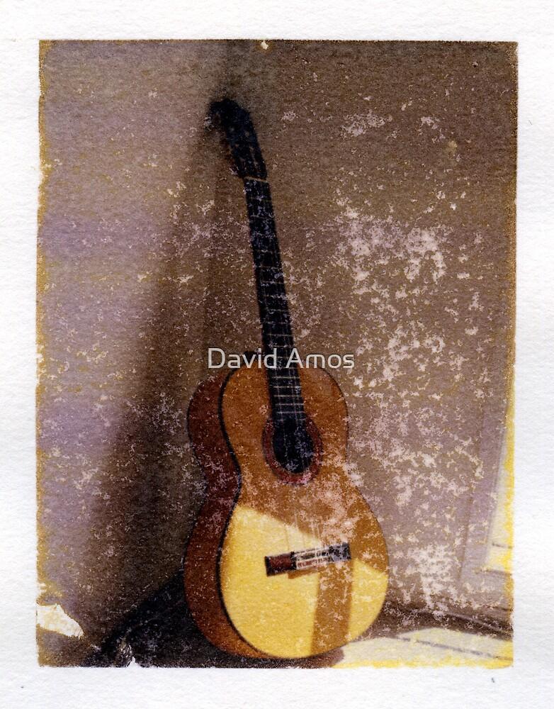 Flamenco Guitar by David Amos