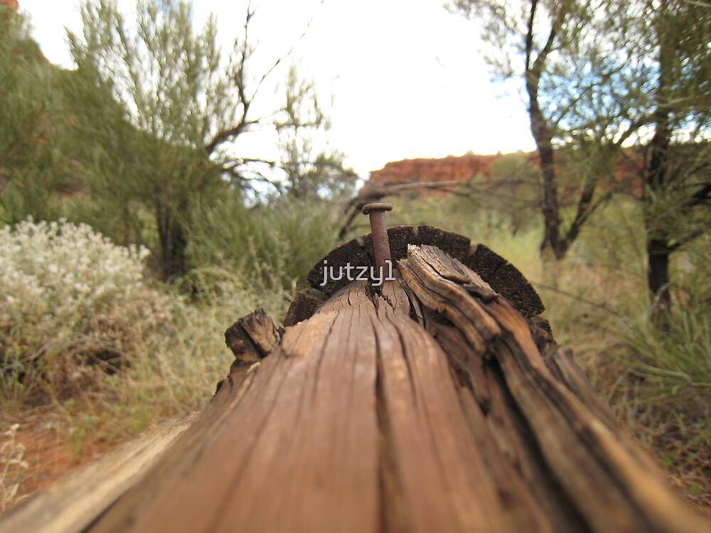 Rusty Nail by jutzy1
