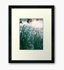 Blue Pond at Sunset Framed Print