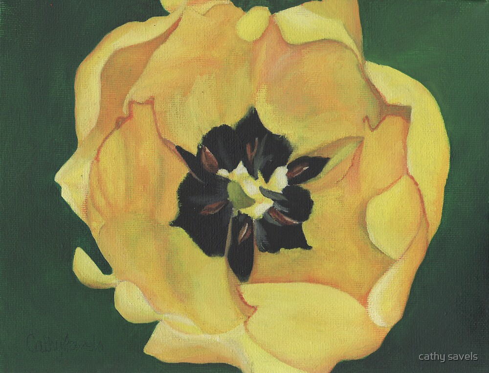 yellow tulip by cathy savels