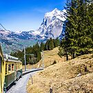 Grindelwald Train by Imagericius