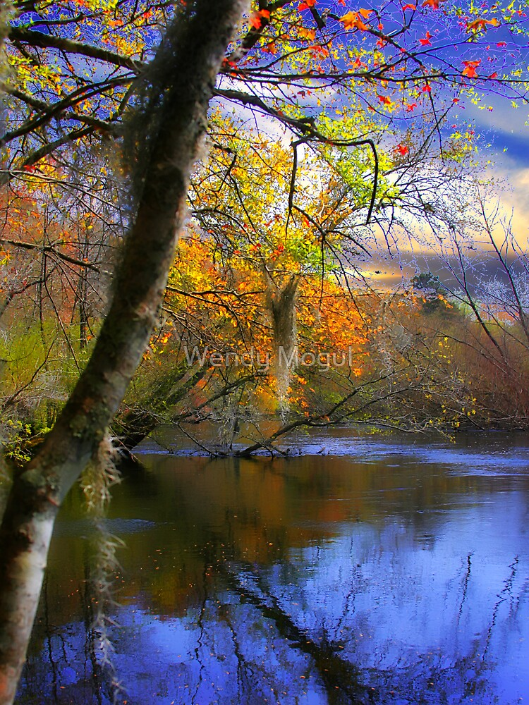 River Sunset by Wendy Mogul
