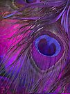 Peacock Candy IV by mindydidit