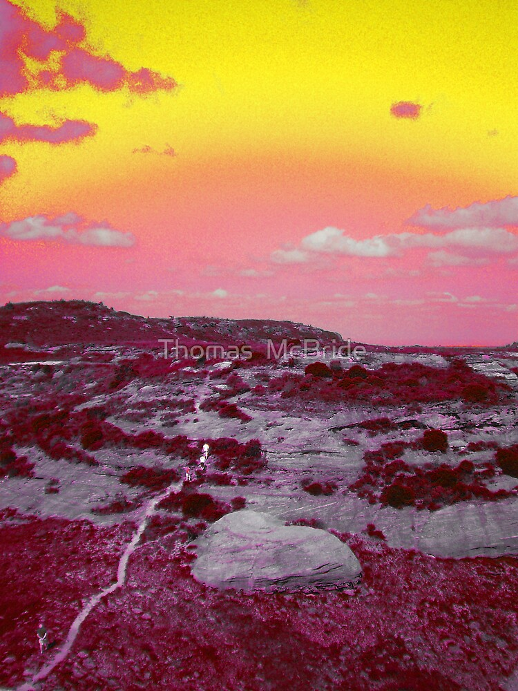 Mt Hay  by Thomas  McBride