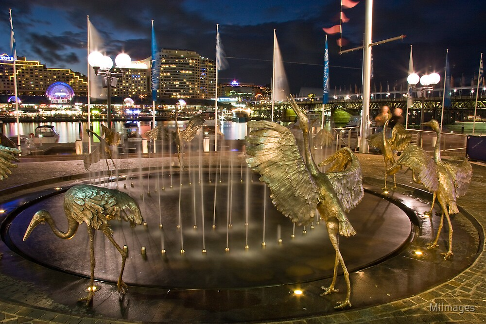 Cockle Bay Fountain  by MiImages