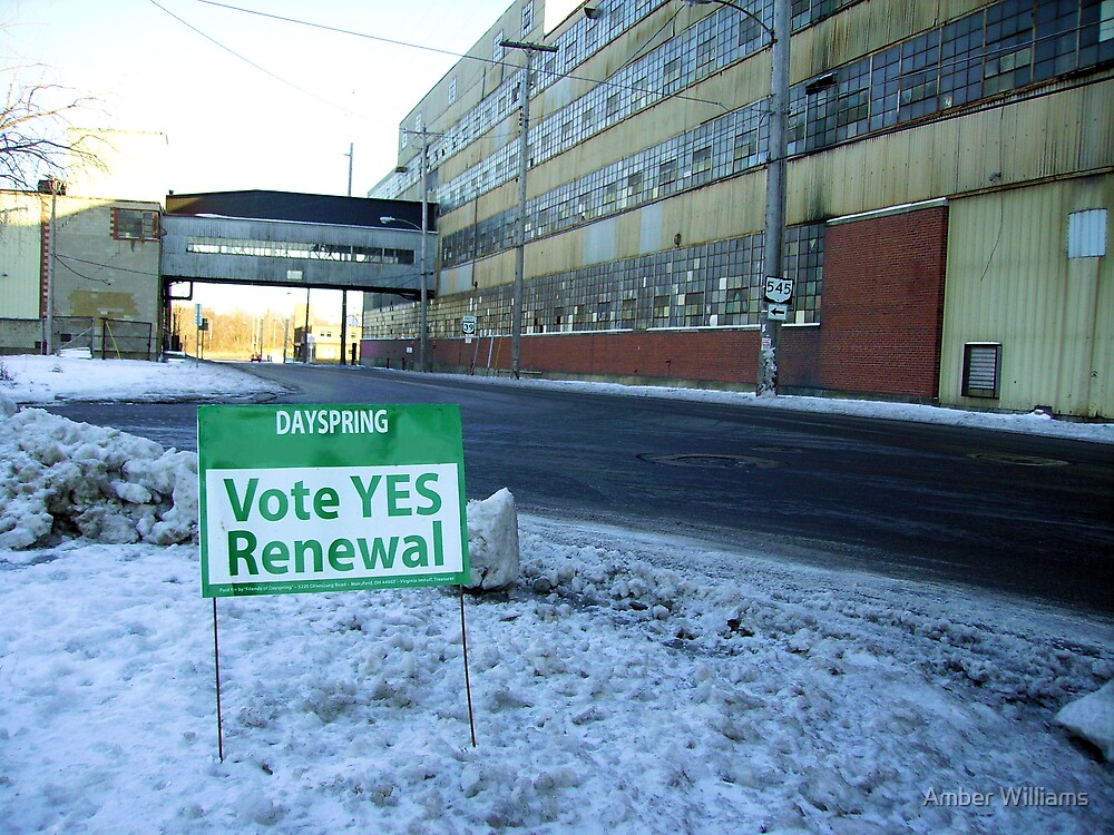 Vote YES! by Amber Williams