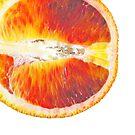 Blood Orange by Nick  Taylor