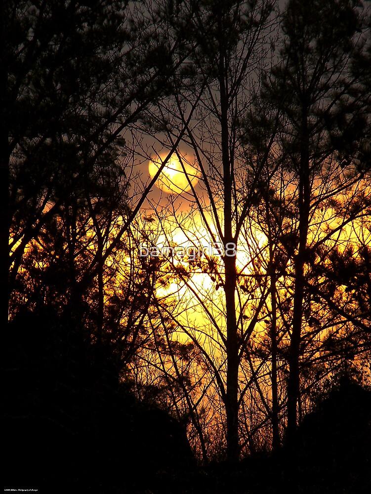 Peek A Boo Sun 2 by bamagirl38