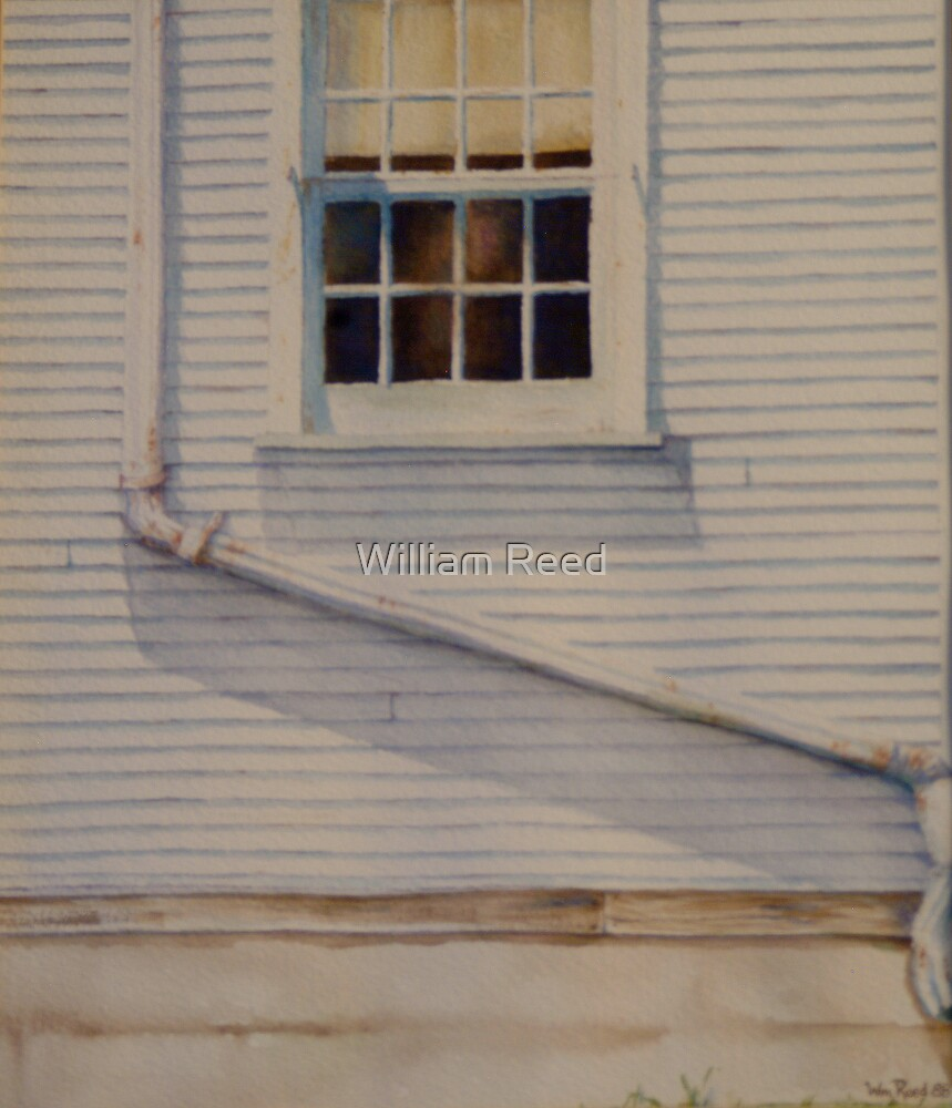 The Window by William Reed