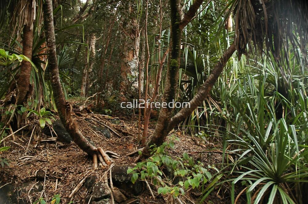 Maui Jungle by call2freedom