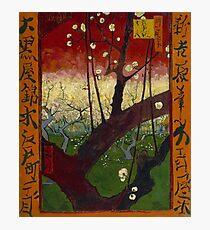 The Blooming Plumtree (after Hiroshige) by Vincent van Gogh Photographic Print
