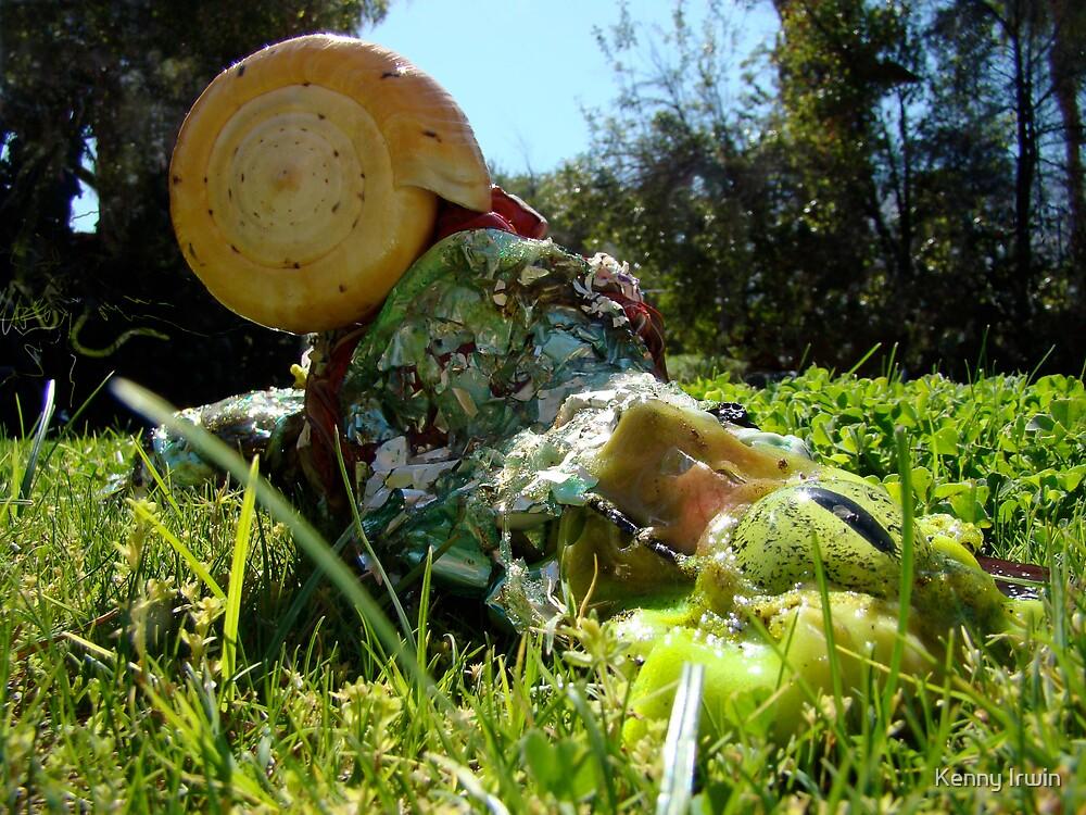 The Novolo Slug in it's Nataural Habitat by Kenny Irwin