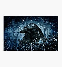 The Three Eyed Raven Photographic Print