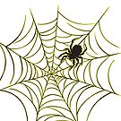 Spider and Web by Lisann