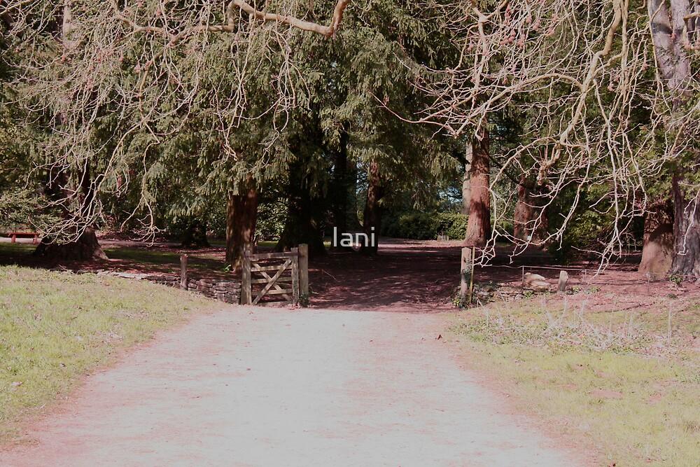 Gateway to a wood by Iani