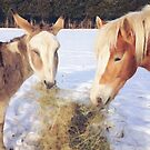 Donkey and Haflinger by jamieleigh