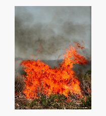 The Fiery Horse of the Apocalypse. Photographic Print