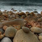 Dinosaur Egg Beach (Porth Nanven, Cornwall) by Caroline Bland