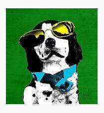 FUNNY DOG POP ART BLUE GREEN Photographic Print