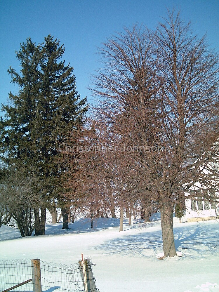 Trees by the Farm House - Iowa Farm - Feb. 2008 by Christopher Johnson